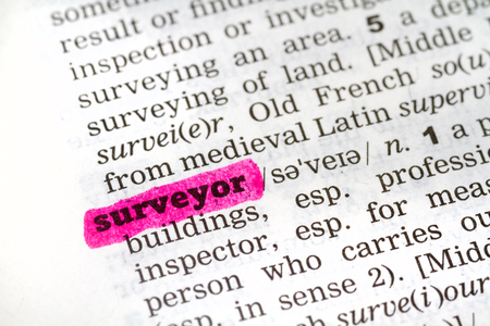 surveyor: Dictionary definition of the word surveyor