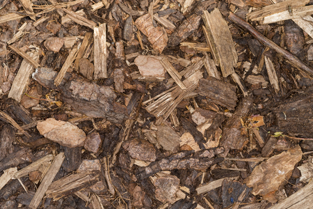 Wood chips for landscaping in the gardens. nature texture background.