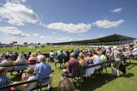 sightsee: Harrogate, North Yorkshire, UK. 15th July, People enjoying the Great Yorkshire Show 15th July, 2015 at Harrogate in North Yorkshire,  England Editorial