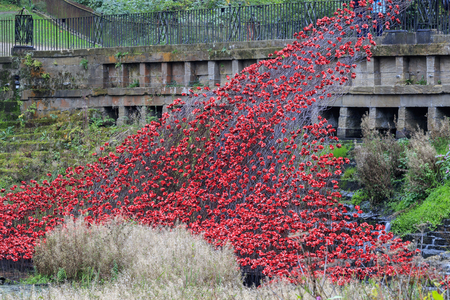 woodland sculpture: Wakefield, West Yorkshire, UNITED KINGDOM - 16th october, 2015: Red Ceramic Poppies Wave exhibition of Tower of London poppies at the Yorkshire Sculpture Park. Editorial