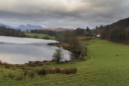 lake district: loughrigg tarn in the lake district UK