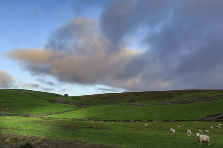 dales: Yorkshire Dales National Park, England