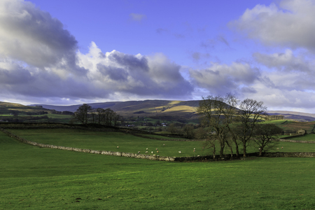 dales: A rural view of the Yorkshire Dales National Park, England