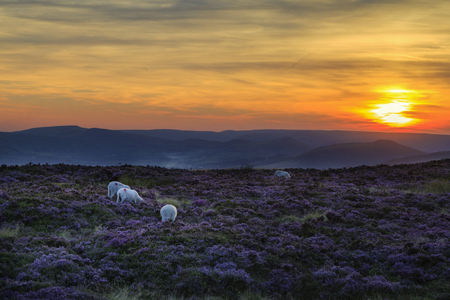 A beautiful sunset in the peak district