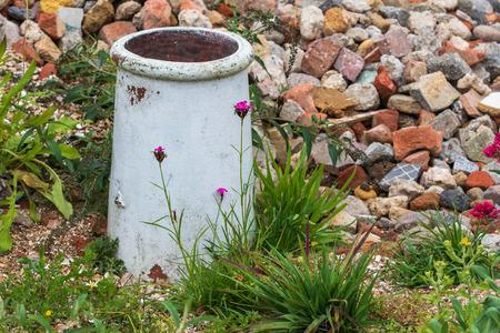 A beautiful Rock garden with flowers in bloom