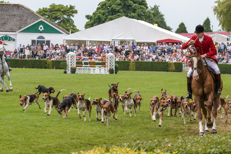 Harrogate, North Yorkshire, UK - July 12th, 2018: Hunt leaders led dozens of hounds into the main ring at the Great Yorkshire Show on 12th July 2018 at Harrogate in North Yorkshire, England Éditoriale