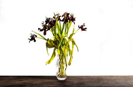 verblasste Tulpen in Glasblumenvase auf rustikalem Holztisch gegen weiße Wand Standard-Bild