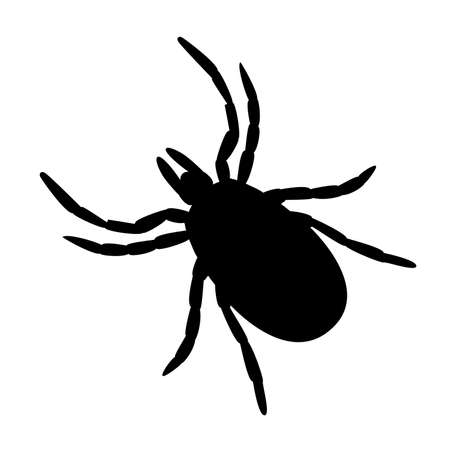simple black and white tick symbol or icon on white background Illustration