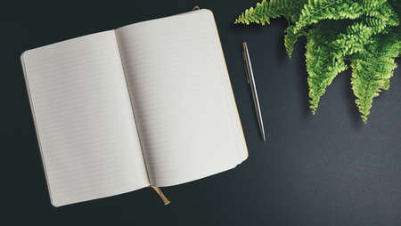 above view of opened notebook with blank pages on dark desk with pen and potted plant
