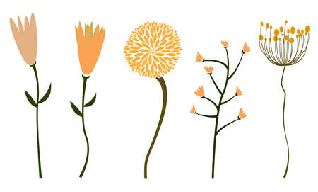 collection of abstract flowers isolated on white vector illustration