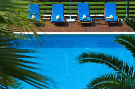 Luxury resort swimming pool framed by tropical plants Stock Photo - 3075074
