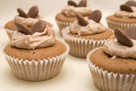 Chocolate  cakes in paper cases Stock Photo - 3468209