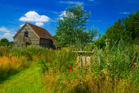 Eco house in natural landscape