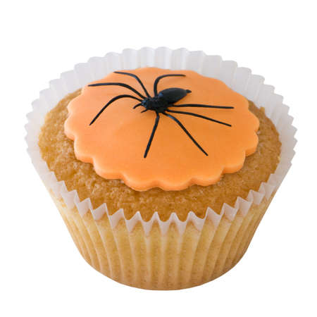 Halloween spider cupcake isolated on white photo