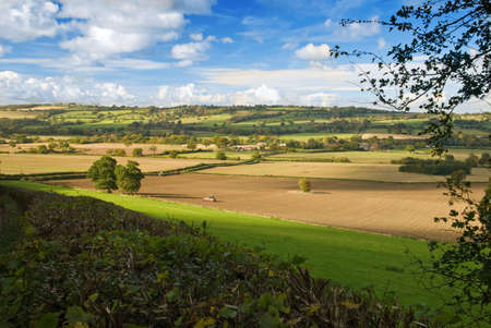 Shropshire farmland view over hedgerow photo
