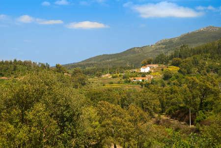region of algarve: Smallholding fruit farm in the Serra de Monchique region, Algarve, Southern Portugal