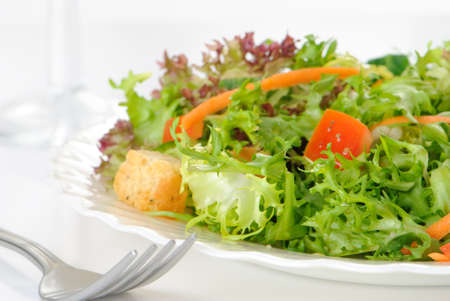 Fresh green salad on a plate - diet concept Stock Photo - 4231888