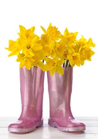 wellington: Arrangement of spring daffodils in pink wellington boots