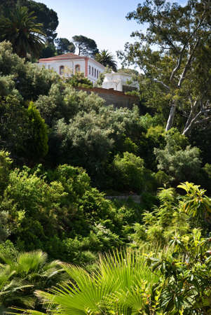 Secluded Mediterranean property surrounded by hot climate plants Stock Photo - 4434144