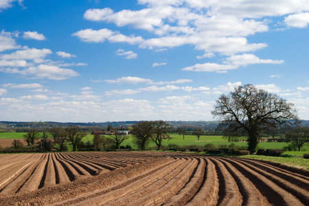ploughed: Early spring ploughed field, Shropshire, UK