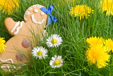 Gingerbread lost in the long grass filled with daisies and dandelions photo