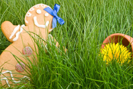 Gingerbread figure lost in the grass with garden pot photo