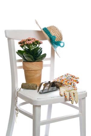 Gardening still life with potted plant and garden tools photo