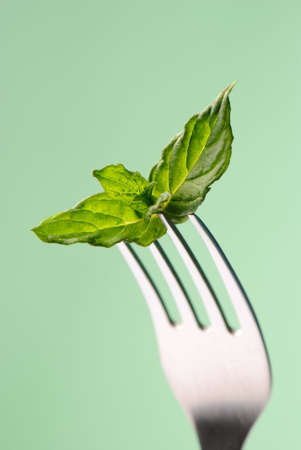 minty: Sprig of mint on fork with minty green background