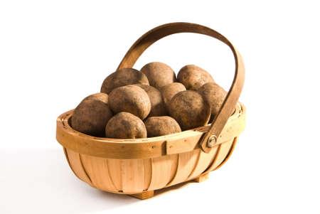 unwashed: Trug of unwashed potatoes on white background, sunlight effect. Stock Photo