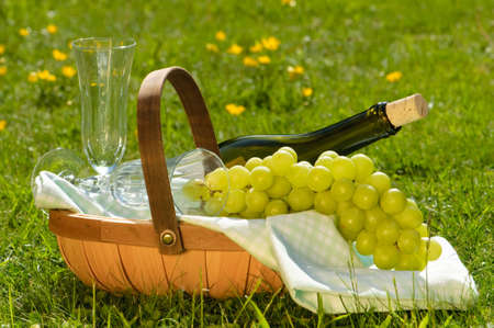 Sharing a glass of white wine in the park with green grapes Stock Photo - 4919198