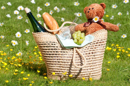 Picnic in the meadow with basket of food and teddy bear photo