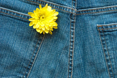 sewn up: Yellow flower in pocket of blue denim jeans