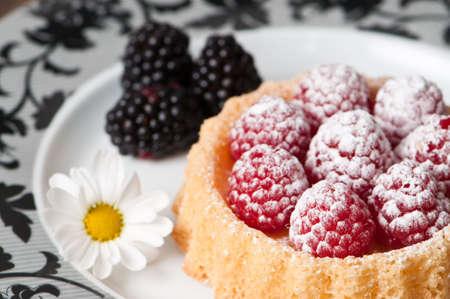 Raspberry sponge dessert with blackberries on the side photo