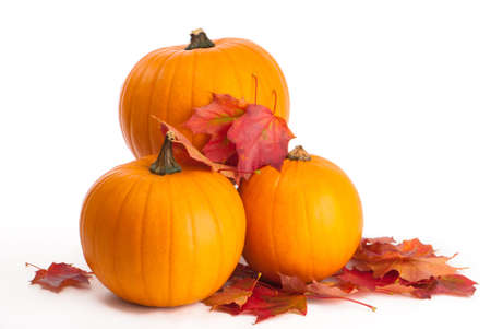 gourds: Harvested pumpkins with fall leaves on white background