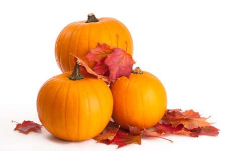 dynia: Zebranych Smashing pumpkins z liśćmi upadku na białym tle