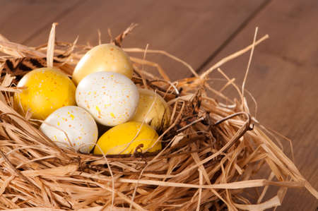 nestled: Speckled Easter eggs nestled in straw nest lined with feathers