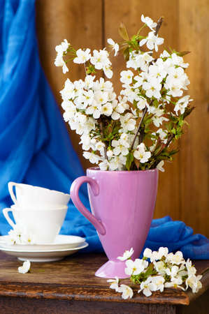 Spring apple blossom still life in rustic setting Stock Photo - 6992393