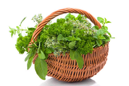 thyme: Basket of freshly picked herbs including parsley, rosemary, oregano, thyme and sage Stock Photo