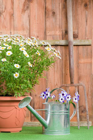 galvanised: Fork leaning against garden shed with flower pot and watering can