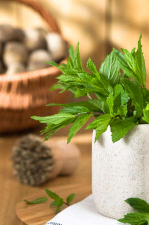 kitchen towel: Garden mint in pot with freshly dug potatoes in background  Stock Photo