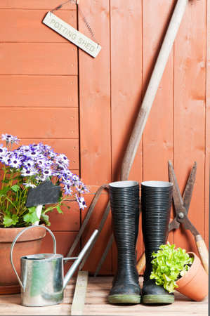 wellies: Garden potting shed with Senetti flowers in terracotta pot with watering can and tools Stock Photo