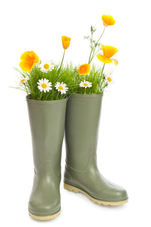 Gardening concept with flowers and grass sprouting from wellington boots photo