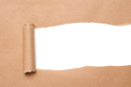 rolled paper: Brown package paper torn to reveal white panel ideal for copy space