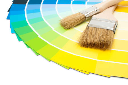 color chart: Paint brushes with colour swatch cards on white background