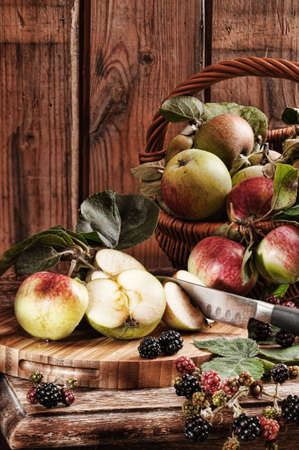 cider: Rustic apples from the orchard with hedgerow blackberries with vintage effect Stock Photo