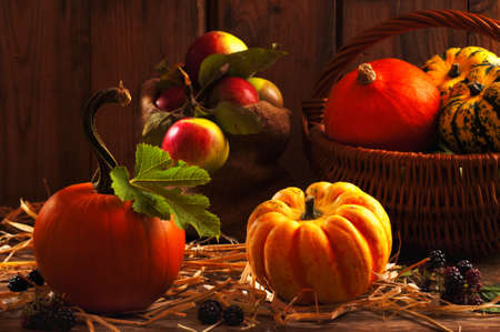Harvest setting with pumpkins, gourds, orchard apples and blackberry fruits