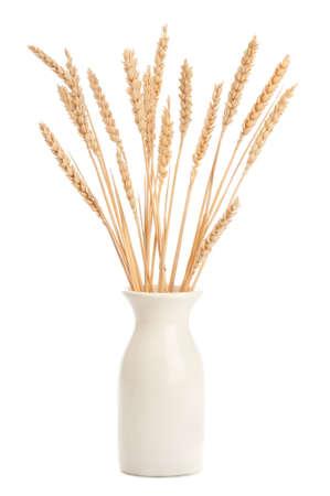 Stalks of wheat in vase on white background