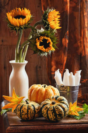 Rustic interior still life with sunflowers and gourds