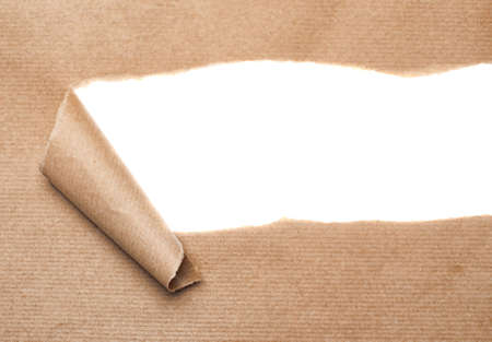 curled paper: Brown package paper torn to reveal white panel ideal for copy space