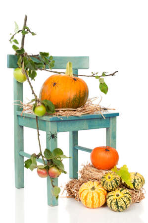 Halloween pumpkin harvest chair with spiders on straw Stock Photo - 7790359